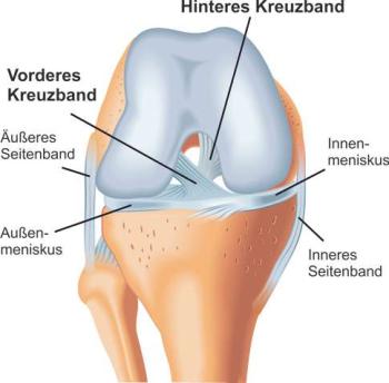 Kreuzbandriss - Der stechende Schmerz im Knie